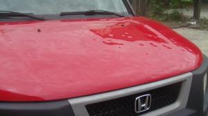 Honda hood